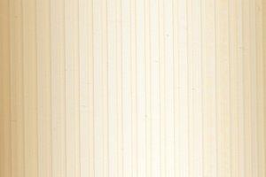 Жалюзи вертикальные, материал - пластик, серия - Рибкорд